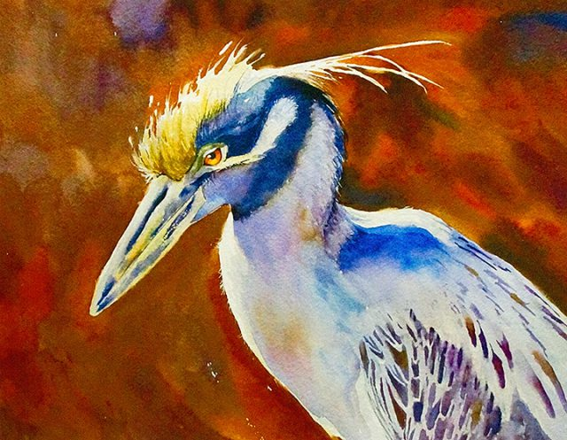 A Night Heron Watercolor by Debra Weible is among the 2-D collection on consignment at the Dunedin Fine Art Center Gallery Shop.